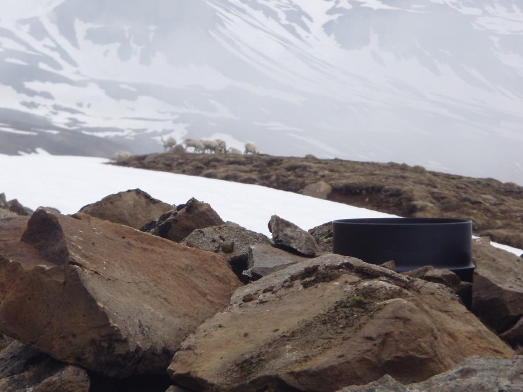 Sjálfvirkur úrkomumælir á Seyðisfirði 2008. Ljósmynd: Sveinn Brynjólfsson.